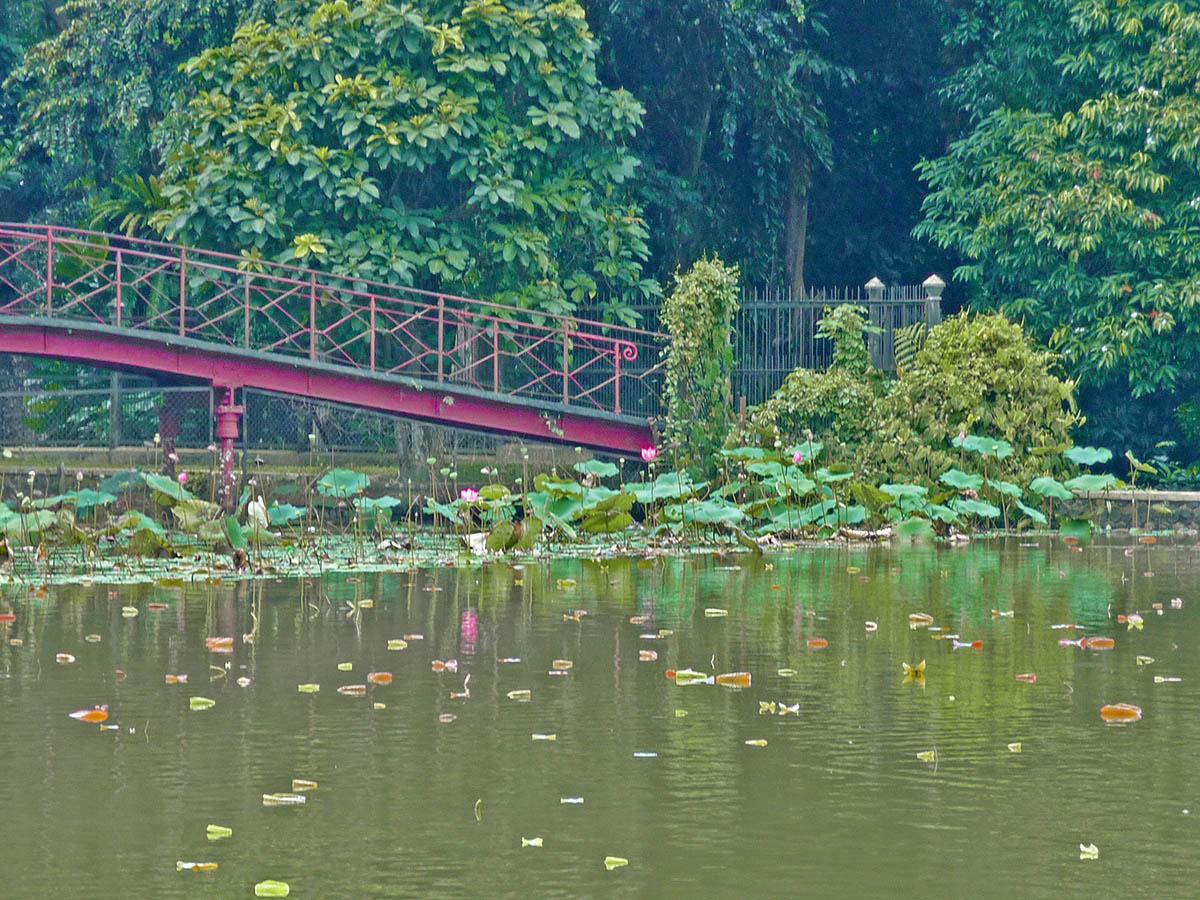 Isola di Java, i giardini botanici di Bogor.
