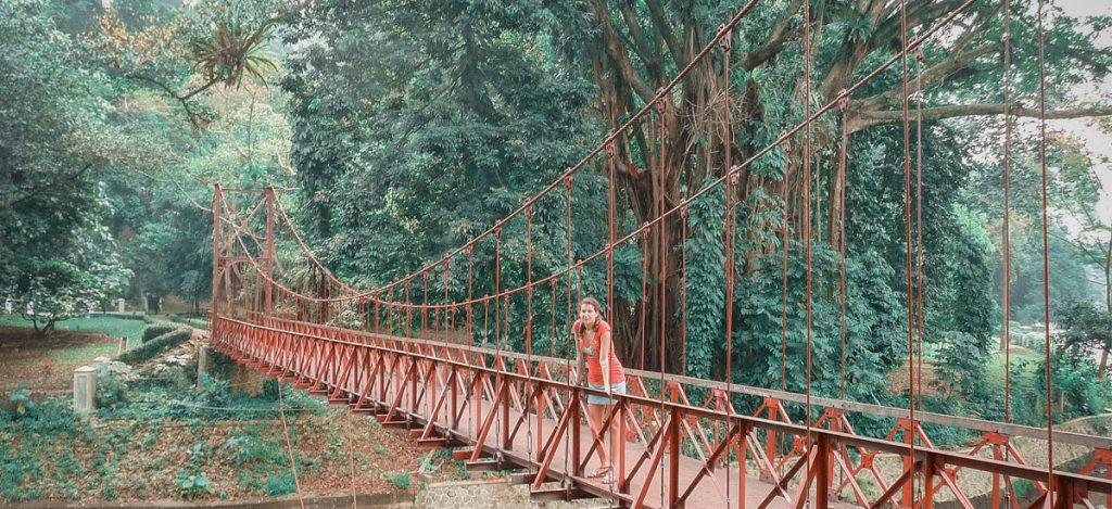 I giardini botanici di Bogor