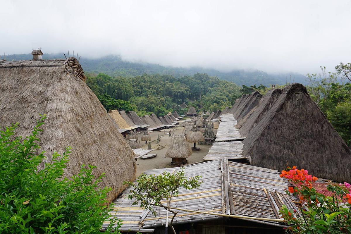 Flores e il Parco di Komodo, le abitazioni tradizionali del villaggio di Bena fra piante di bouganville e foresta