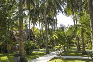Island View Bar & Bungalow, il giardino tropicale