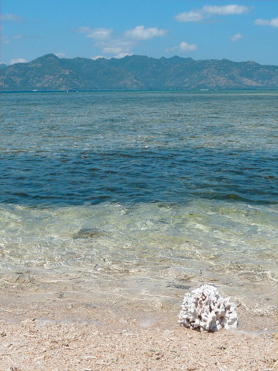 Isole Gili, la guida pratica