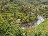 Il Sud di Bali - Jimbaran
