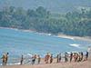Hotel e Resort a Ubud, nel cuore di Bali