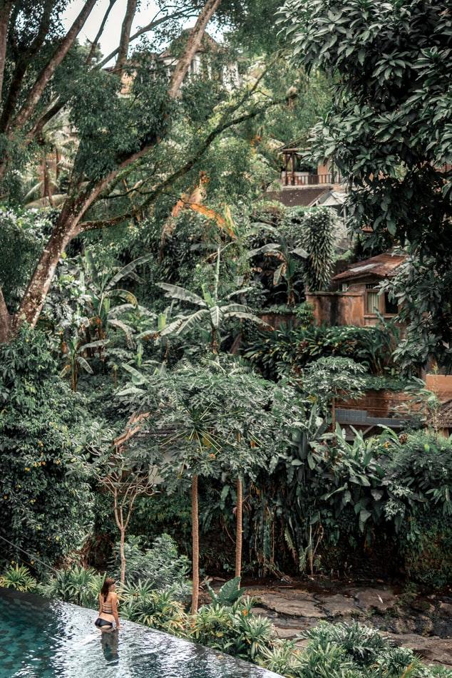 itinerario a Bali, hotel e resort a Ubud.
