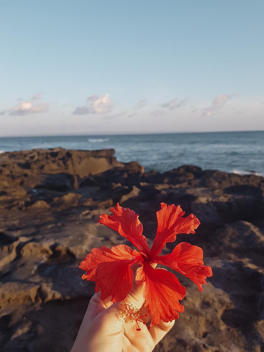 Canggu, la spiaggia nera di Seseh.